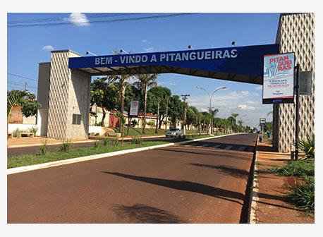 2004 - Pintangueiras